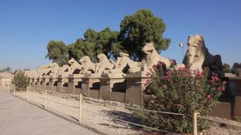 Der Eingang zum Karnak-Tempel
