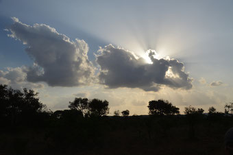 Sonnenuntergang: Aufbruch zur Nachtsafari im Phinda Game Reserve