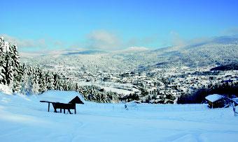 Auch im Winter: Ein Genuss & pure Erholung!