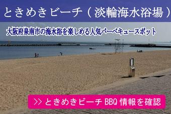 ときめきビーチ BBQ情報