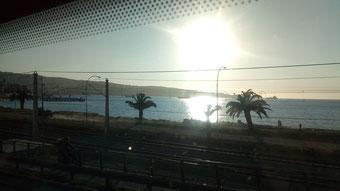 photo prise à travers la vitre du bus, on y voit la route, la mer, les palmiers, le soleil et son reflet sur l'eau