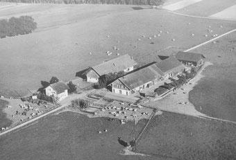 Wohnhaus und Stallungen um 1940