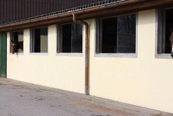 Fensterboxen im 14er-Stall