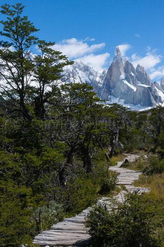 Vagabondages - Patagonie - Argentine © Olivier Philippot
