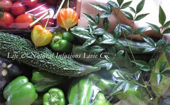 ♡ りびえ旬野菜《夏のお野菜セット》