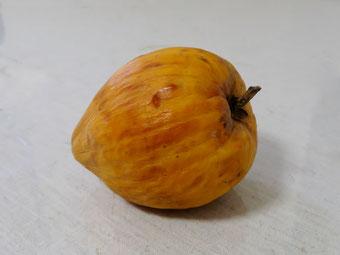 不老長寿の果物「仙桃」。