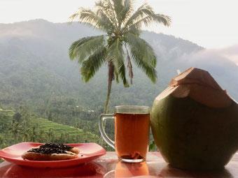 Lemukih Trekking zu den traumhaften Sekumpul- und Fiji-Wasserfällen in Nordbali, mit Bali Surya Tours Lovina