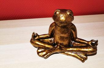 Frosch mag Yoga