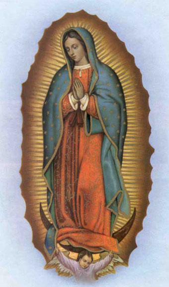 Image result for free image our lady of guadalupe