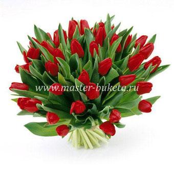 Тюльпаны Подольск