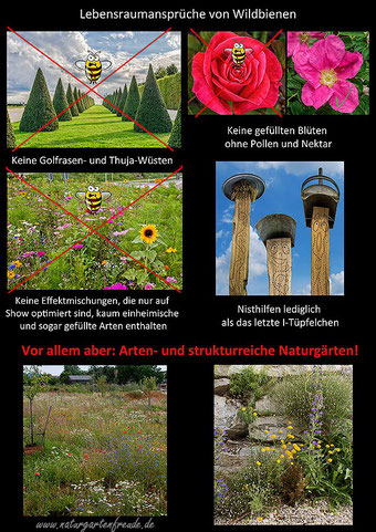 Schautafel solitäre Wildbienen Garten Naturgarten