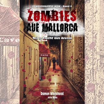 """alt=""""Buchcover Zombie-Roman vor Hintergrund"""""""