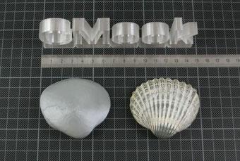 3D-Druck Dienstleistung exp. 3D-Scannen Beispiel Muschel Vergleich 3D-Druck gespiegelt