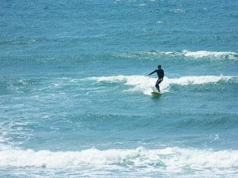 昨日の南西ウネリは北西へと変化し徐々に風も吹いてきました。