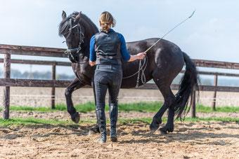 Piaffe, grondwerk, onderstandig paard, paard leren verzamelen, academische rijkunst piaffe