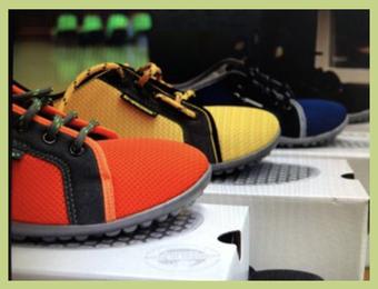 Bild Schuhe leguanos