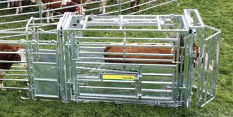 Agro-Widmer Stalleinrichtungen - Behandlungsstände von Patura