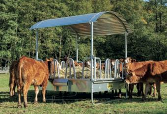 Agro-Widmer Stalleinrichtungen und Silos - Foto Futterraufe Kühe Patura