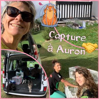 Capture à Auron (2020) Cliquez sur l'image