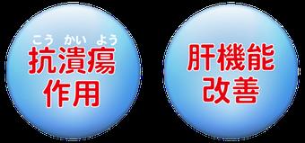 抗潰瘍          肝機能改善