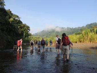 Morgenwanderung im Flussbett des Rio Bonito