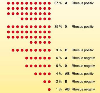Rhesus 0 Negativ