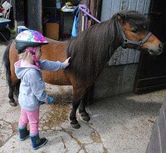 95e8f6cbbf2f97 Beim Eltern-Kind-Reiten wollen wir Kinder im Alter von vier bis sechs  Jahren an das Thema Reiten heranführen. Neben Pflege und Umgang mit dem  Pony möchten ...