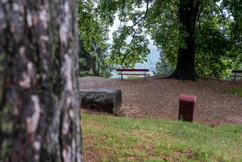Parco della burcina