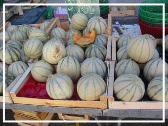 Melonen ©ChristinaBecker