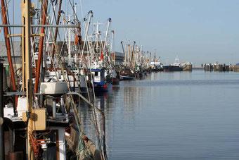 Stadtrundfahrt Cuxhaven mit Außenkurteilen