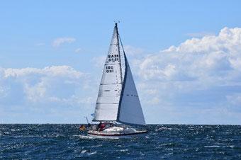 solara Solarmodule auf dem Segelboot Krabbe von Marc L. seit über 20 Jahren zuverlässig Solarstrom mit der Solara M-Serie. Solaranlage und Solarmodul haben alle Tests mit Salzwasser für Segelboot auf der Ostsee bestanden. Ein zufriedener Kunde!