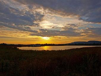 Sonnenuntergang über der Auenlandschaft. - Foto: Kathy Büscher