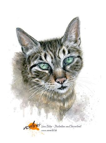 Tierportrait Katze malen lassen