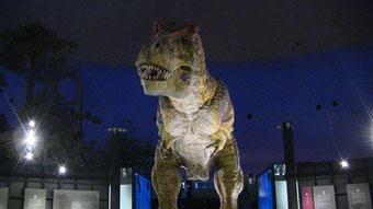 恐竜博物館2012