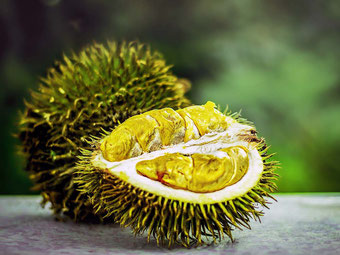 Cibo e cucina in Indonesia. Durian