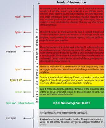 Je höher das Signal eines dysfunktionalen Rezeptors, desto größer die Kompensation des ZNS.