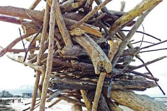 A beach-debris sculpture at Palm Beach