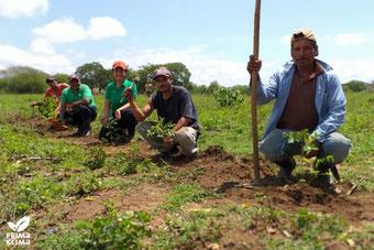 Die meteocontrol GmbH unterstützt mit einer Spende von 5.000 Euro an PRIMAKLIMA eine Kleinbauernfamilie in Nicaragua bei der Aufforstung einer brachliegenden Fläche. Bildquelle: PRIMAKLIMA