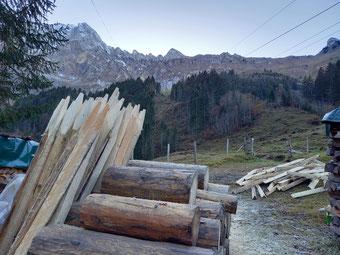 Zaunpfähle vor Alpkulisse
