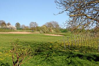 Blick vom Ferienhaus auf den Golfplatz in Bamlach