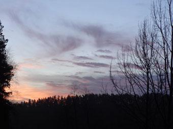 Auf dem heutigen Morgenspaziergang, ... ohne Schnee und Frost.