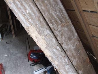 le bois des ouvrages de charpente mis à nu (ici arbalétrier sur contre-arbalétrier) est nettement plus atteint que le bois des ouvrages visibles : les galeries des larves de capricornes sont plus nombreuses