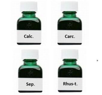 ホメオパシーレメディー(Calc、Carc、Sep、Rhus-t)