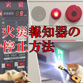火災報知設備と誘導灯が同時に鳴る