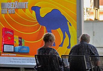 Camel, Bahnhof, Plakatwand, Rauchen