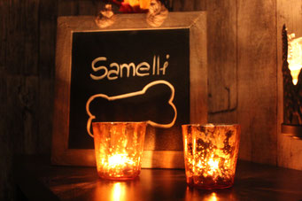 Samelli in warmer Winterstimmung