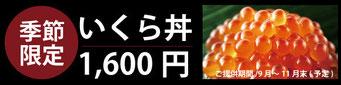 江別の寿司店 やま六鮨おすすめの季節限定いくら丼です。