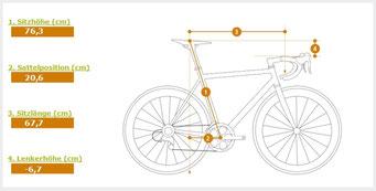 Ermittelte Grundeinstellung für die Sitzposition bei einem ausgewählten Fahrrad  (Setup-Fitting)