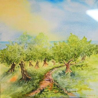 Olivenhain am Mittelmeer, Aquarell auf Leinwand, 80x80 cm, Beatrice Ganz, 2018