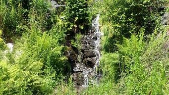 Altenau Wasserfall im Kräuterpark